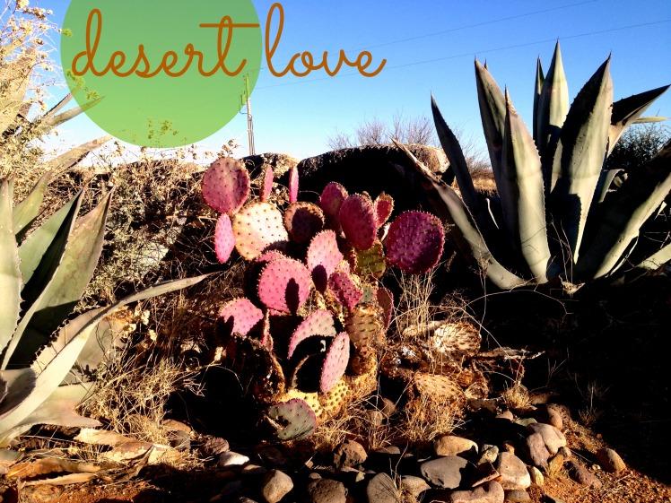desertlove