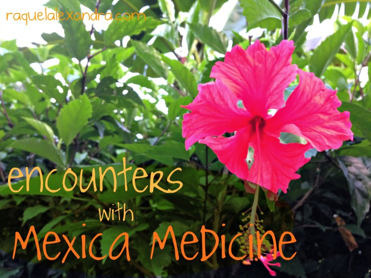 mexicamedicine